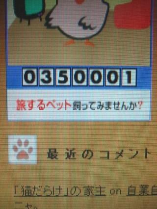 2008_02210002