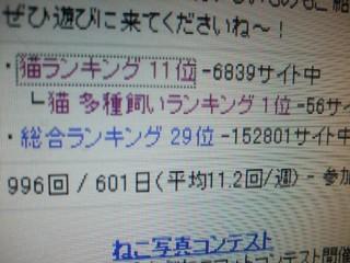 2008_03040001