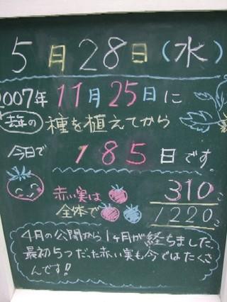2008_05280018
