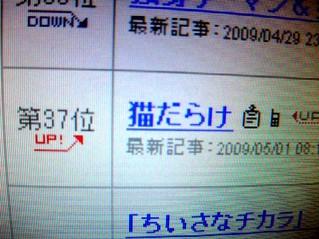 2009_05010031