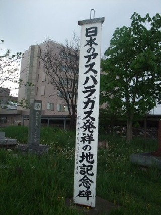 2009_05220045